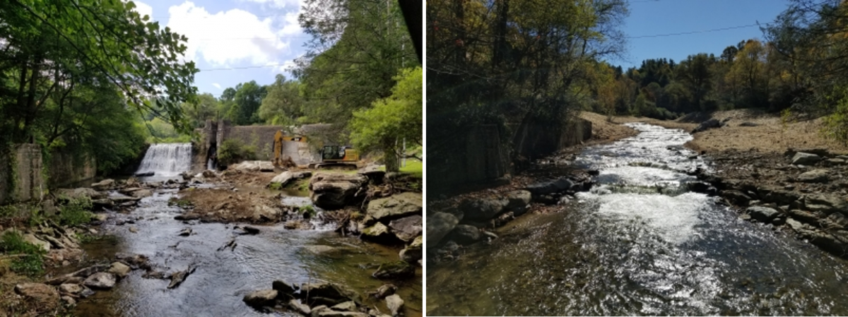 Payne Branch project before and after